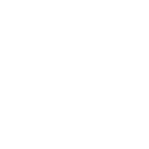 DST Film Studio - logo